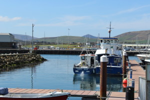 Dingle Ahoy Boat Trips