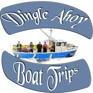 Dingle Ahoy Logo